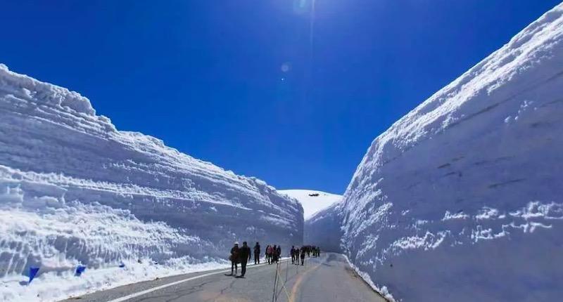 2019年日本立山黑部・阿爾卑斯路線4月15日開放,來去看雪牆囉!