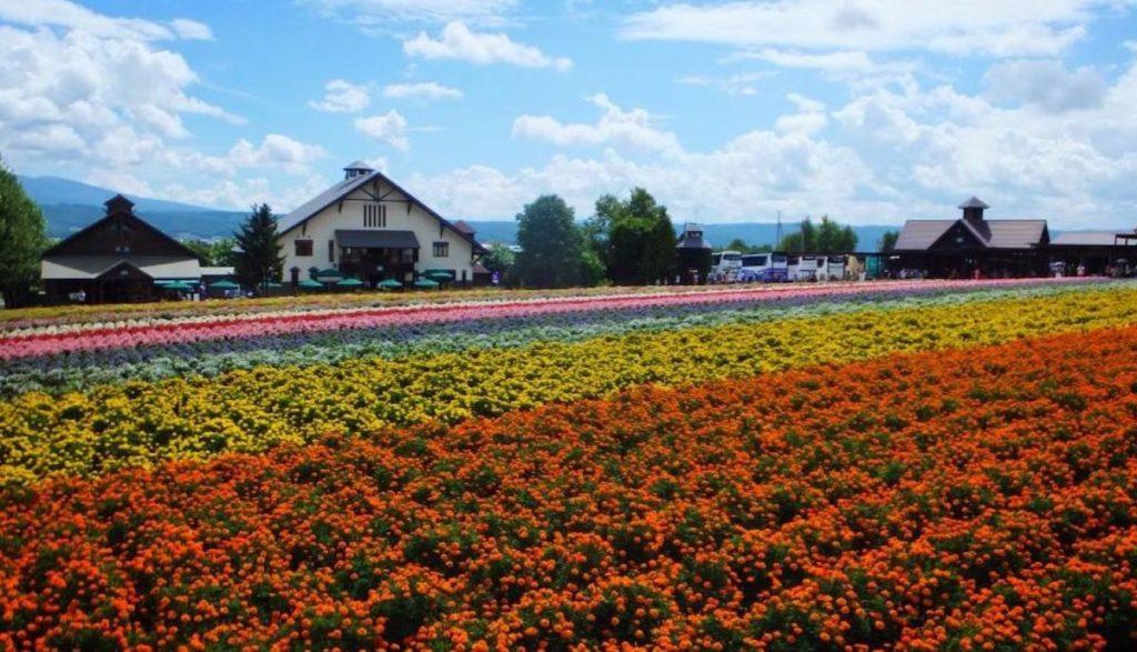 日本女孩失戀治癒旅行地點,找回幸福的心情