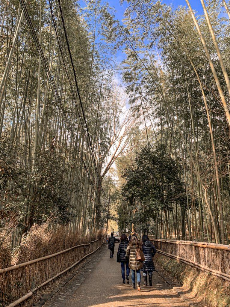 京都清幽散策行