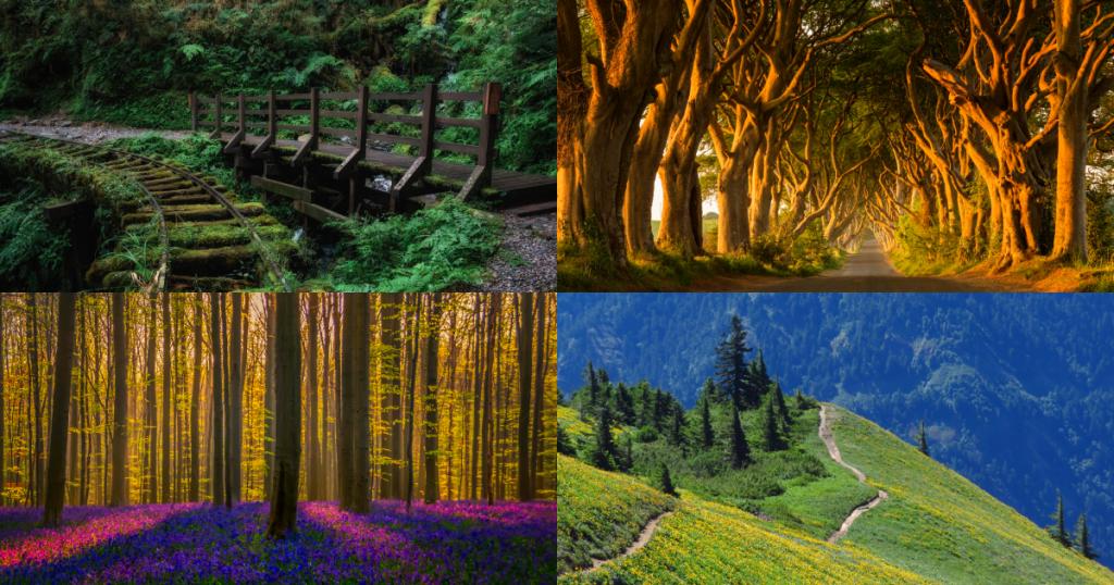 彷彿置身在仙境・全球絕美十大自然小徑你走過哪些?